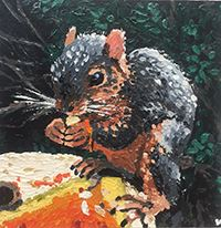 Image of squirrel by Michaela Quirk